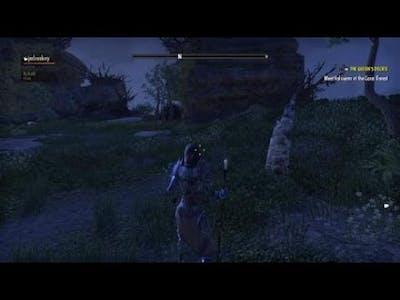 The Elder Scrolls Online Summerset Boss fight Haelaita&Nagravia