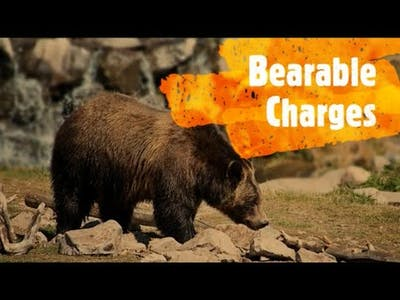 Hunting Unlimited: Bearable Charges