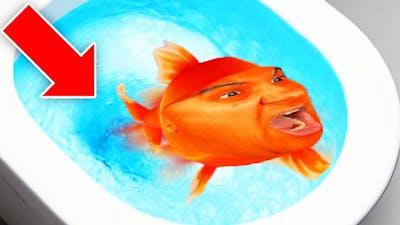 I Am A Fish...