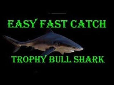Fishing Planet / Amazonian Maze Bull Shark Trophy Hot Spot