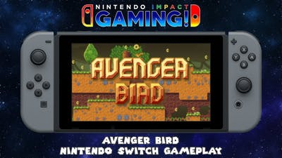 Avenger Bird   Nintendo Switch Gameplay
