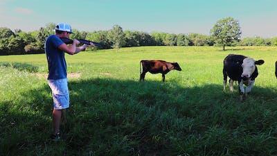 Shooting a Sick Calf!