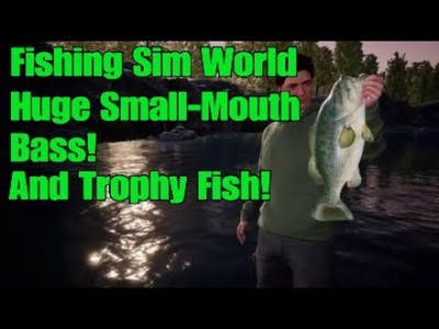 Fishing Sim World - 4IB Huge Bass! And Other Trophy Fish!