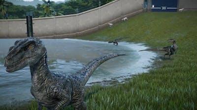Jurassic World Evolution raptor squad dlc showcase