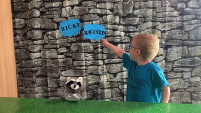 Comparative Endings with Ricky Raccoon