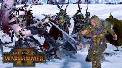 Sigvald Is Bad? - Chaos vs Dark Elves // Total War: Warhammer II Online Battle