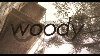 Genesis Woody: Teamtage