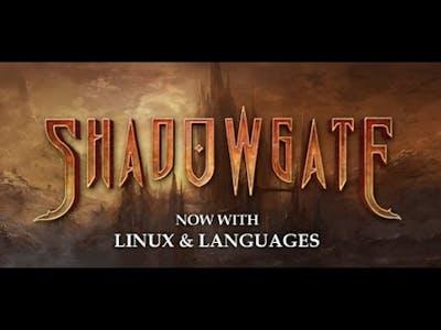Shadowgate 2014