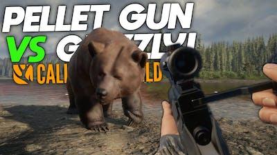 Pellet Gun VS Grizzly Bear! | theHunter: Call Of The Wild