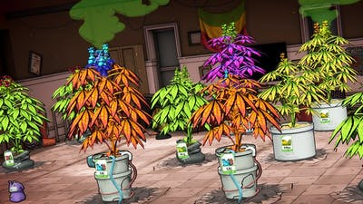 I Built a Business Designed to Get Me Arrested Repeatedly - Weedcraft Inc