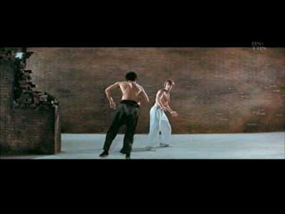 Bruce Lee Tribute- King of Kung Fu HD