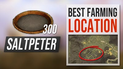 How to get SALTPETER in New World - Best Farming Location Guide