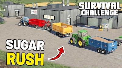SUGAR RUSH! | Survival Challenge | Episode 91