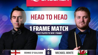 Snooker 19, only one break to finish the game.