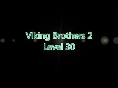 Viking Brothers 2 Level 30
