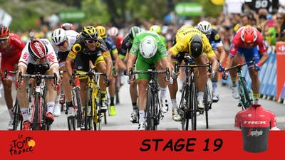 TOUR DE FRANCE 2017 | STAGE 19 | PRO CYCLING MANAGER 2017