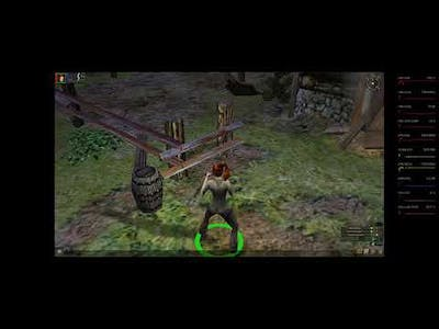Dungeon Siege 1: Flickering and High Resolution Crash Fixes (Win10)