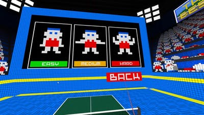 Quicklook [0412] PCVR - VR Ping Pong