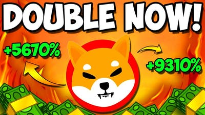 *EMERGENCY* DOUBLE YOUR SHIBA INU TOKENS RIGHT NOW OR YOU WILL REGRET! - EXPLAINED