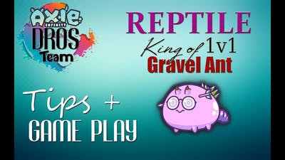 GRAVEL ANT and CHOMP CARD GAME PLAY + TIPS