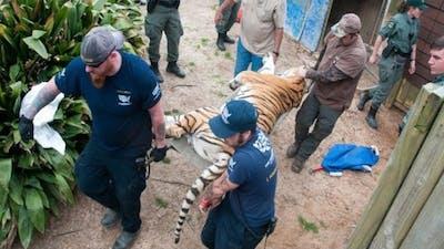 Dangerous Roadside Zoo Rescue