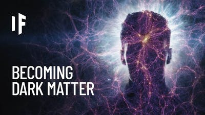 What If You Were Made of Dark Matter?