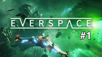 This game is so cool! Everspace (#1)