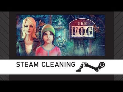 Steam Cleaning - The Fog: Trap for Moths