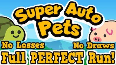 PERFECT GAME! START TO FINISH: 10-0 (NO DRAWS, NO LOSSES) - Super Auto Pets