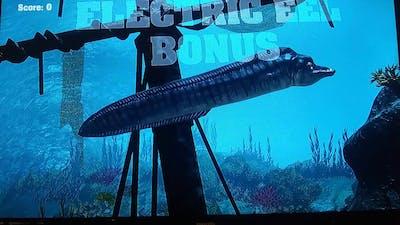 All bonuses on Big Buck Hunter Arcade