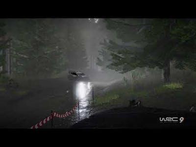 WRC 9 FIA World Rally Championship_20210710094549