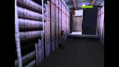 Tomb Raider Chronicles - The base