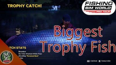 Catching The Biggest Trophy Arapaima Fish In Fishing Sim World Pro Tour