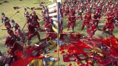 Total war - Three kingdoms - a bloody battle