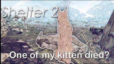Shelter 2 -  Mother Lynx, one kitten died?
